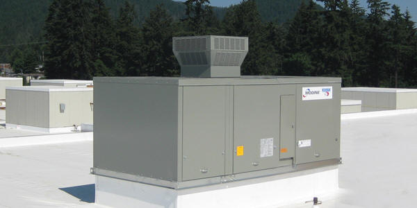 Fmw Distributors Modine Commercial Hvac Heating Applied